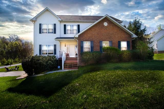 295 Holland View Drive, Jonesborough, TN 37659 (MLS #9920940) :: Conservus Real Estate Group