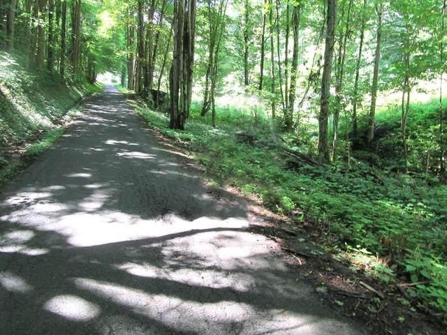 Tbd Right Higgins Creek Road, Flag Pond, TN 37657 (MLS #9920941) :: Red Door Agency, LLC