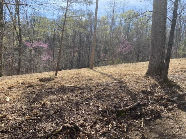 Lots 6 & 7 Hilltop View Ln, Bean Station, TN 37708 (MLS #9920983) :: Bridge Pointe Real Estate