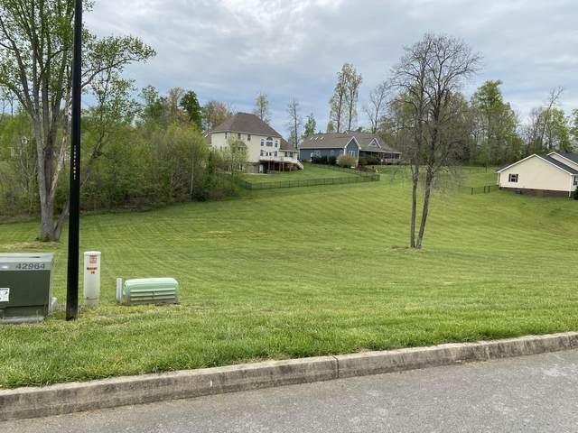 00 Grace Drive, Greeneville, TN 37745 (MLS #9920995) :: Tim Stout Group Tri-Cities
