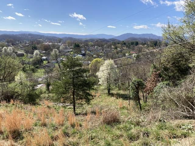 1338 Gibson Street, Johnson City, TN 37601 (MLS #9921014) :: Conservus Real Estate Group