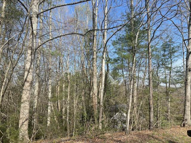 Tbd Cherokee Circle, Erwin, TN 37650 (MLS #9921063) :: Conservus Real Estate Group