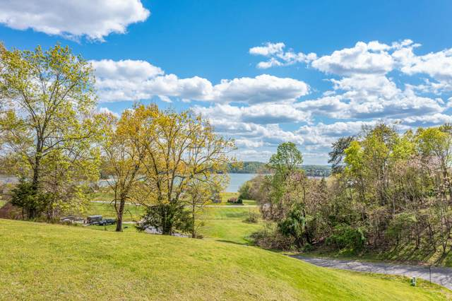 9022 Paradise View Drive, Mooresburg, TN 37811 (MLS #9921069) :: Conservus Real Estate Group