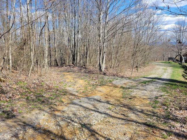 Tbd Cheetah Drive, Big Stone Gap, VA 24219 (MLS #9921087) :: Tim Stout Group Tri-Cities