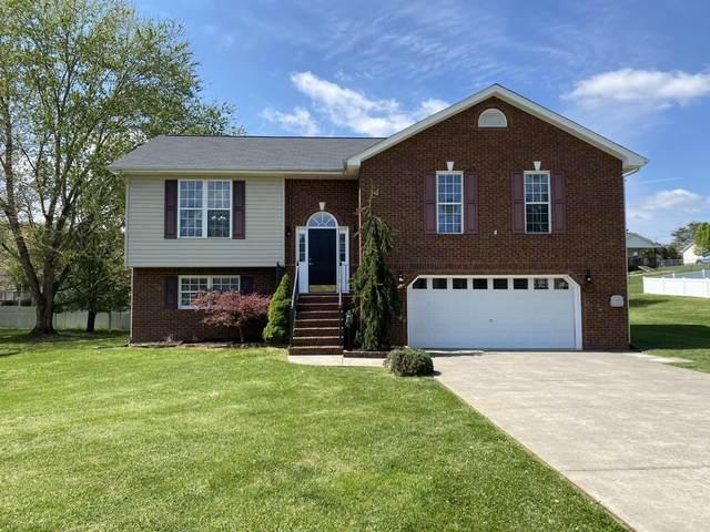 137 Nicole Drive, Mount Carmel, TN 37645 (MLS #9921104) :: Conservus Real Estate Group