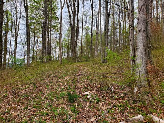 00 Tbd Gg Two Angels Lane, Big Stone Gap, VA 24219 (MLS #9921140) :: Red Door Agency, LLC