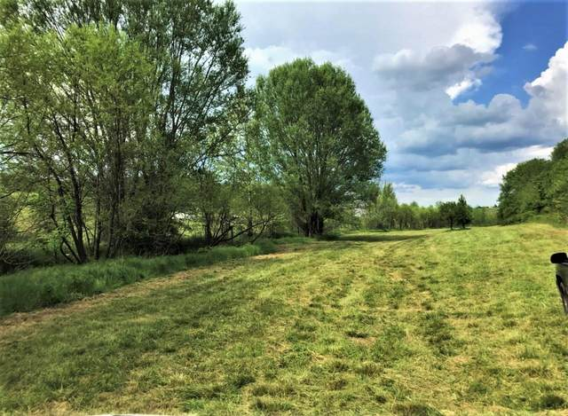 0 Tweed Springs Road, Greeneville, TN 37743 (MLS #9921162) :: Conservus Real Estate Group