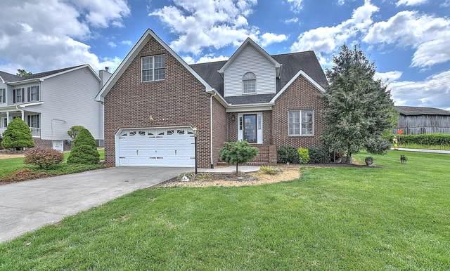 300 Ambrosia Drive, Kingsport, TN 37664 (MLS #9921222) :: Conservus Real Estate Group