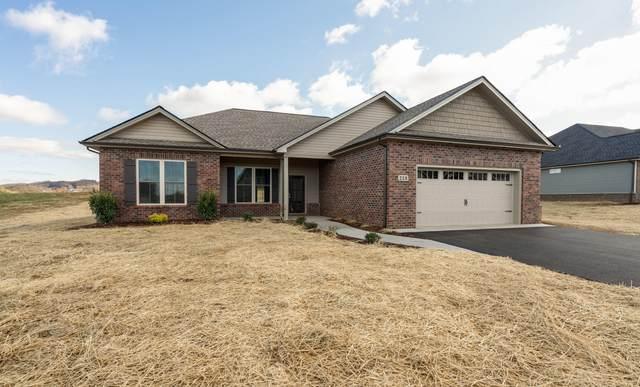 281 Miss Maude Patton Lane, Jonesborough, TN 37659 (MLS #9921228) :: Conservus Real Estate Group
