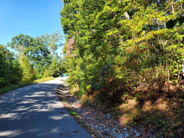 Lot 579 Tortoiseshell Circle, New Tazewell, TN 37825 (MLS #9921231) :: Conservus Real Estate Group