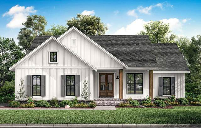 309 Miss Maude Patton Lane, Jonesborough, TN 37659 (MLS #9921235) :: Conservus Real Estate Group