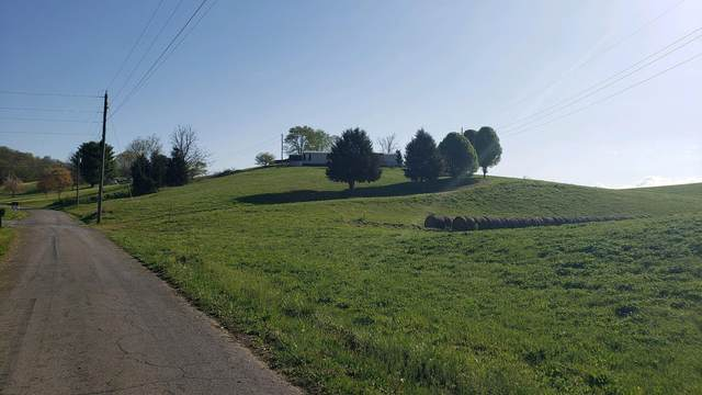 198 Gatewood Road, Surgoinsville, TN 37873 (MLS #9921285) :: Conservus Real Estate Group