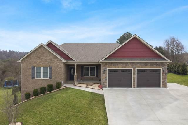 1238 Savin Falls, Gray, TN 37615 (MLS #9921314) :: Conservus Real Estate Group