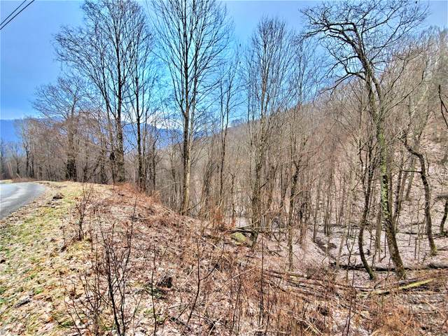 Tbd Elk Wallow Rd Road, Bakersville, NC 28705 (MLS #9921328) :: Conservus Real Estate Group