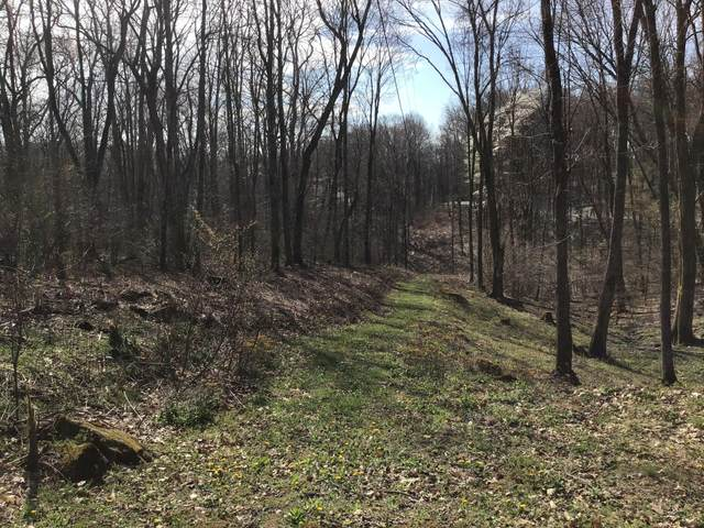 Tbd Cardinal Road, Coeburn, VA 24230 (MLS #9921329) :: Conservus Real Estate Group