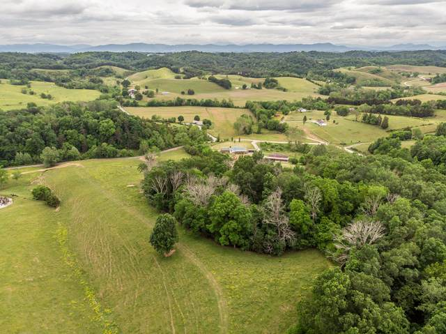 Tbd Valleydale Road, Mosheim, TN 37818 (MLS #9921370) :: Tim Stout Group Tri-Cities