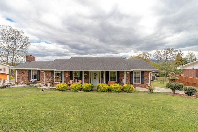 909 Clearwood Avenue, Kingsport, TN 37660 (MLS #9921382) :: Conservus Real Estate Group