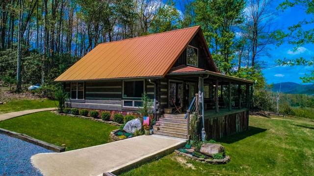 4207 Trail Hollow Road, Cosby, TN 37722 (MLS #9921393) :: Conservus Real Estate Group