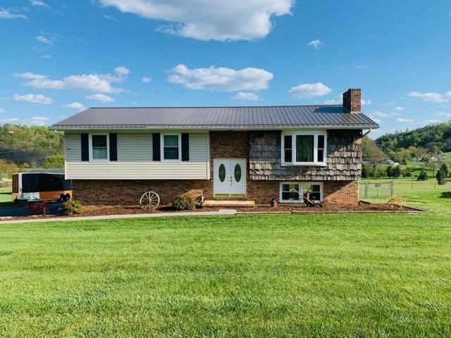 430 Old Hickory Circle, Mount Carmel, TN 37645 (MLS #9921399) :: Conservus Real Estate Group