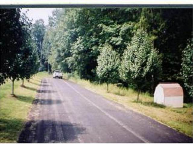 Tr 4 Crystal Lane Lane, Unicoi, TN 37692 (MLS #9921419) :: Bridge Pointe Real Estate