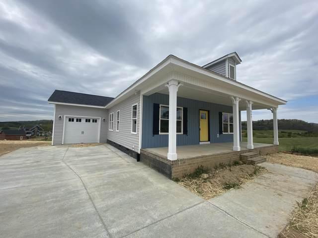 257 Lake View Drive, Bristol, TN 37620 (MLS #9921422) :: Conservus Real Estate Group