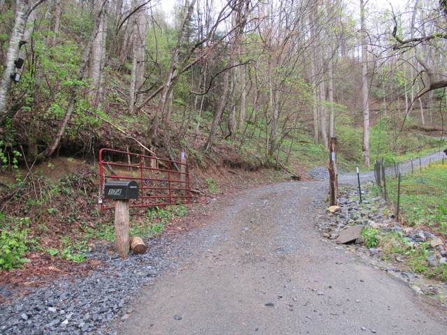 174 Doty Road, Roan Mountain, TN 37687 (MLS #9921444) :: Red Door Agency, LLC