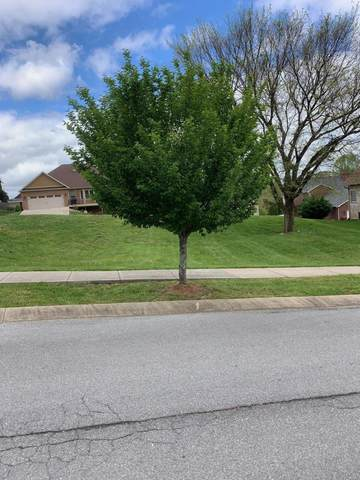409 Oliver Approach, Johnson City, TN 37601 (MLS #9921513) :: Conservus Real Estate Group