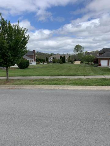 417 Oliver Approach, Johnson City, TN 37601 (MLS #9921514) :: Conservus Real Estate Group