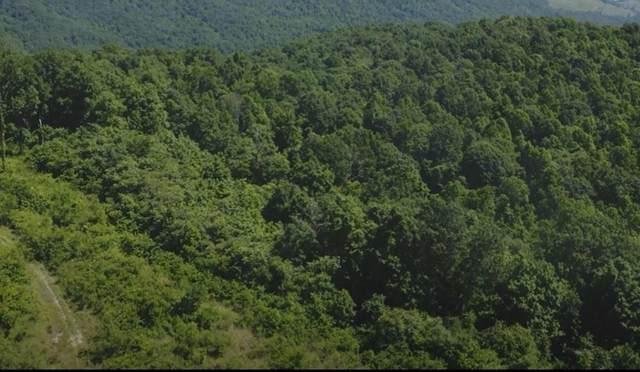 158 Acres Panther Creek Road, Sneedville, TN 37869 (MLS #9921531) :: Bridge Pointe Real Estate