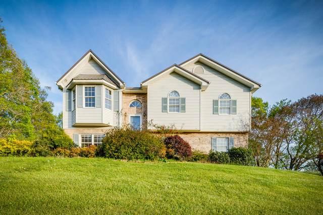 742 Rector Drive, Kingsport, TN 37665 (MLS #9921541) :: Conservus Real Estate Group
