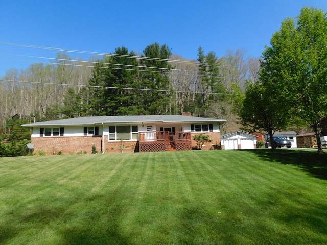 385 Heaton Creek Road, Roan Mountain, TN 37687 (MLS #9921629) :: Red Door Agency, LLC