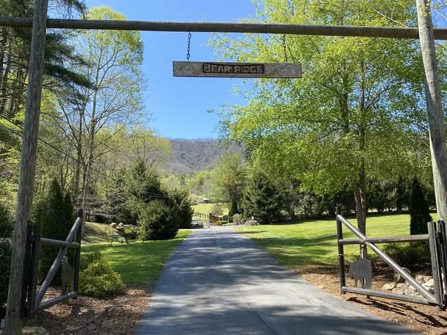 36 Bear Ridge Drive, Bulter, TN 37640 (MLS #9921651) :: Conservus Real Estate Group