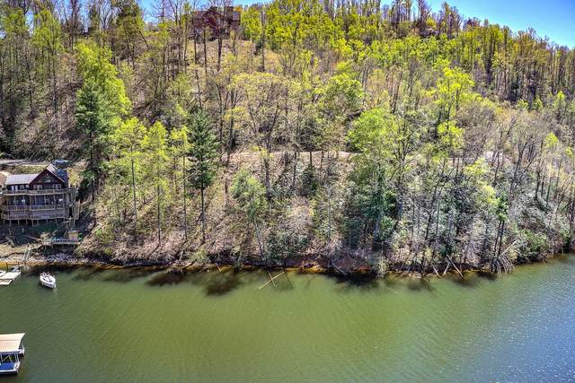 Lot 3 Coves Edge Dr Drive, Butler, TN 37640 (MLS #9921654) :: Highlands Realty, Inc.