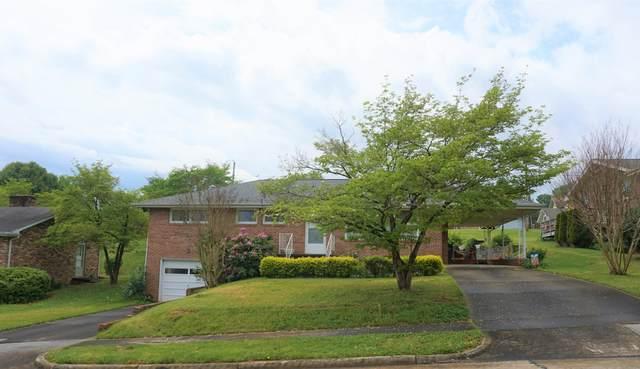 1017 Whippoorwill Lane, Kingsport, TN 37660 (MLS #9921886) :: Conservus Real Estate Group