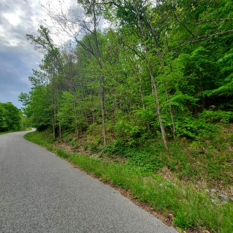 Lot 130 Whistle Valley Road, New Tazewell, TN 37825 (MLS #9921951) :: Highlands Realty, Inc.