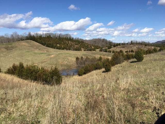 Tbd Webster Valley Road, Rogersville, TN 37857 (MLS #9922011) :: Conservus Real Estate Group