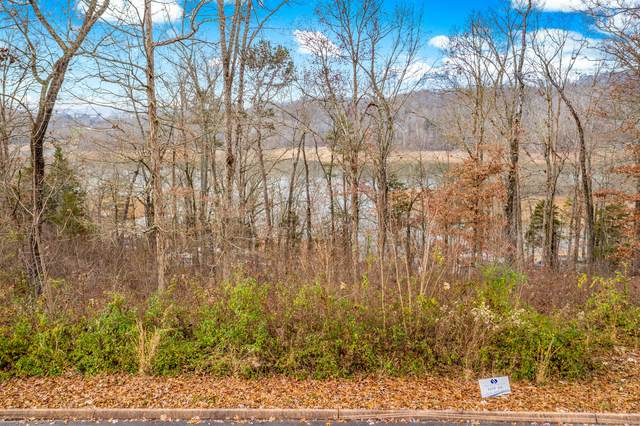 Lot 24 Aidans Trail, Rutledge, TN 37861 (MLS #9922012) :: Bridge Pointe Real Estate