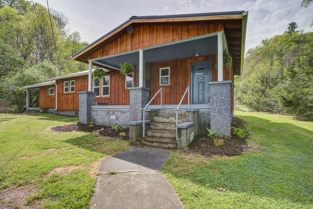 133 Whitehead Hollow Road, Roan Mountain, TN 37687 (MLS #9922052) :: Conservus Real Estate Group