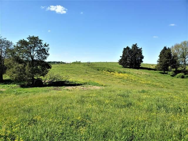 00 Young Road, Bulls Gap, TN 37711 (MLS #9922077) :: Conservus Real Estate Group