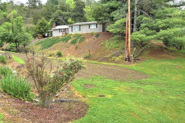 176 Gilliam Avenue, Duffield, VA 24244 (MLS #9922114) :: Conservus Real Estate Group