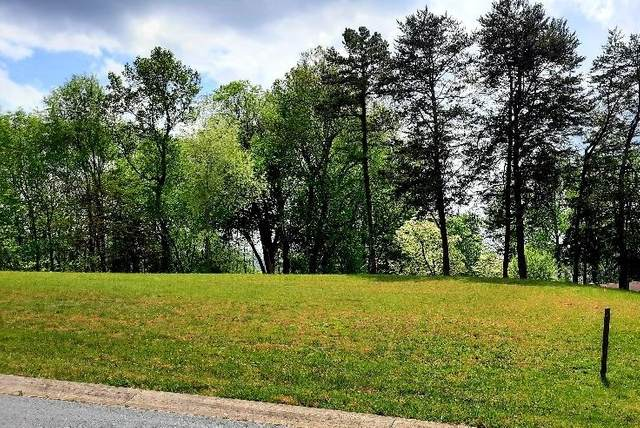 87 Fountain (Lot #3) Court, Johnson City, TN 37604 (MLS #9922160) :: Conservus Real Estate Group