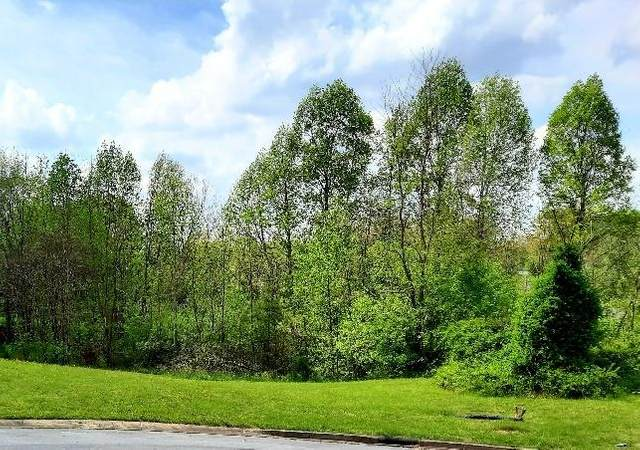 125 Fountain (Lot #5) Court, Johnson City, TN 37604 (MLS #9922161) :: Red Door Agency, LLC