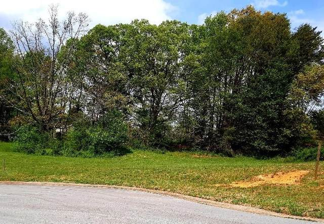 118 Fountain (Lot #7) Court, Johnson City, TN 37604 (MLS #9922163) :: Red Door Agency, LLC