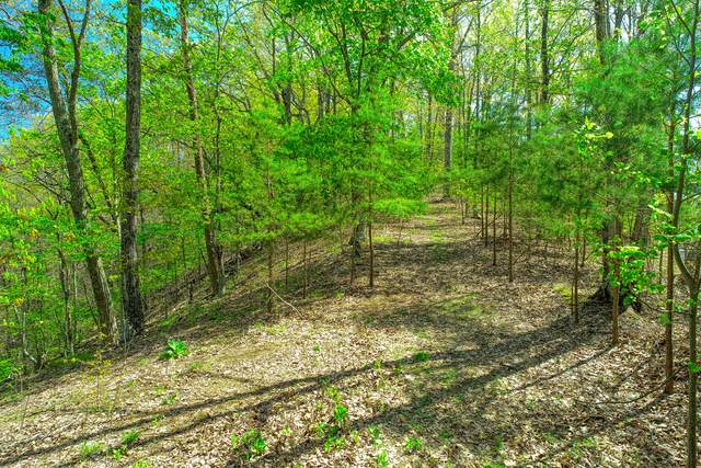 Tbd Proffitt Ridge Road, Mooresburg, TN 37811 (MLS #9922176) :: Conservus Real Estate Group