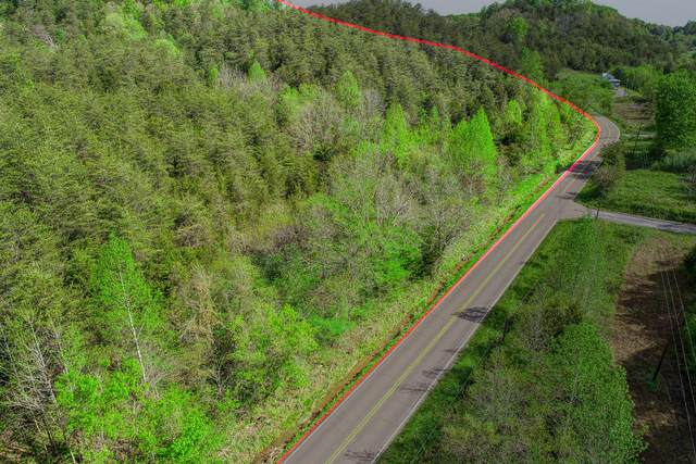 Tbd Lonesome Pine Trail, Greeneville, TN 37745 (MLS #9922177) :: Conservus Real Estate Group