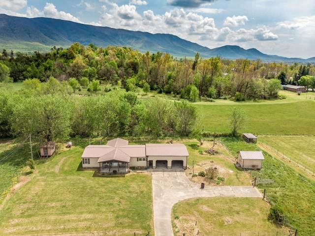 1114 Rambo Road, Greeneville, TN 37743 (MLS #9922209) :: Highlands Realty, Inc.