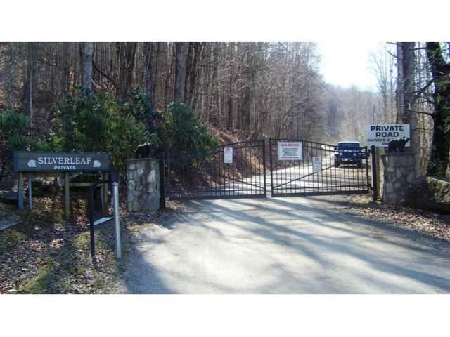 000 Silverleaf Road, Lot #9B, Zionville, NC 28698 (MLS #9922246) :: Red Door Agency, LLC