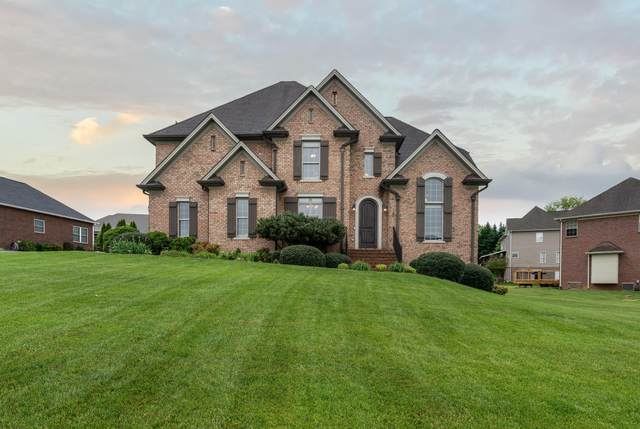 141 Sunset Meadows Court, Gray, TN 37615 (MLS #9922258) :: Bridge Pointe Real Estate