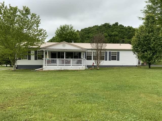 230 Roaming Dr Drive, Chuckey, TN 37641 (MLS #9922261) :: Bridge Pointe Real Estate