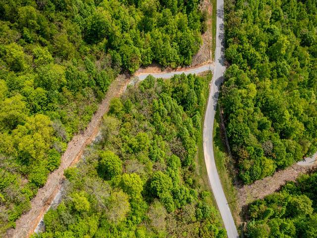 Lot 620 Chimney Rock Road, New Tazewell, TN 37825 (MLS #9922284) :: Red Door Agency, LLC